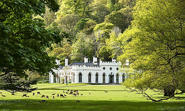 The Irish Ancestral Home of the Guinness Family Feels Like a Small Castle
