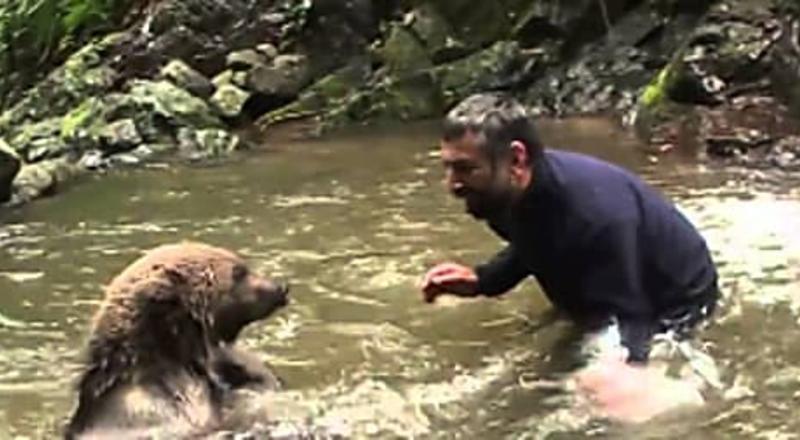 Mamãe Urso faz isso depois que o homem salva seus filhotes de afogamento..