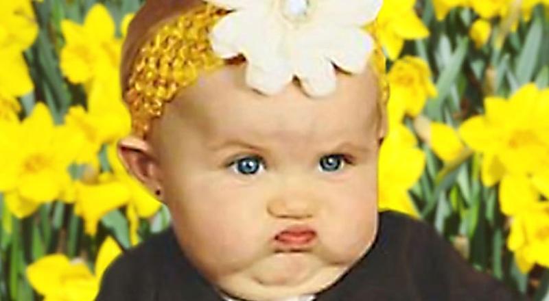 16 Sessões de fotos de bebês que não saíram como planejado